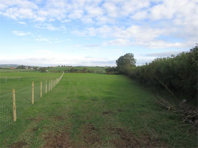 19 acres or thereabouts of Land at Maesgwynne Farm, Llanboidy, Whitland