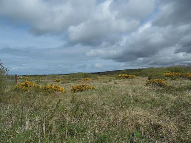 Plot 1 and Plot 2, Celtic Link Industrial Park, Scleddau, Fishguard, Pembrokeshire