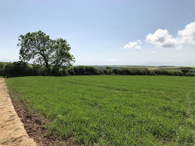 22 acres of land, Rickeston, Milford Haven, Pembrokeshire