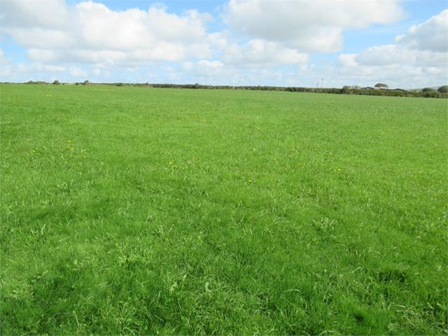 17.10 Acres Agricultural Land, Formerly part of Priskilly Fawr, Castlemorris, Haverfordwest, Pembrokeshire