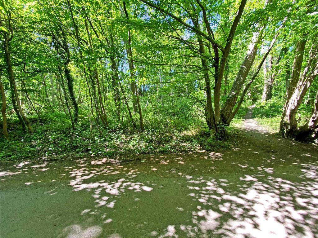 Carters Hill Lane, , Culverstone, Meopham, Kent
