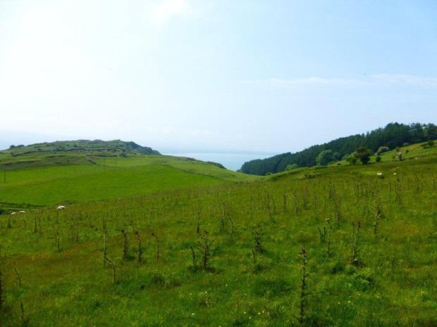 Aberdovey, Gwynedd