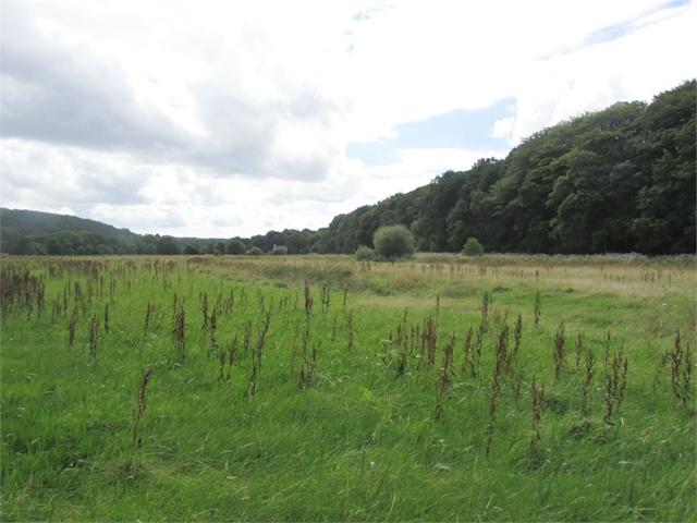 14.43 Acres or thereabouts of land, Llawhaden, Narberth, Pembrokeshire