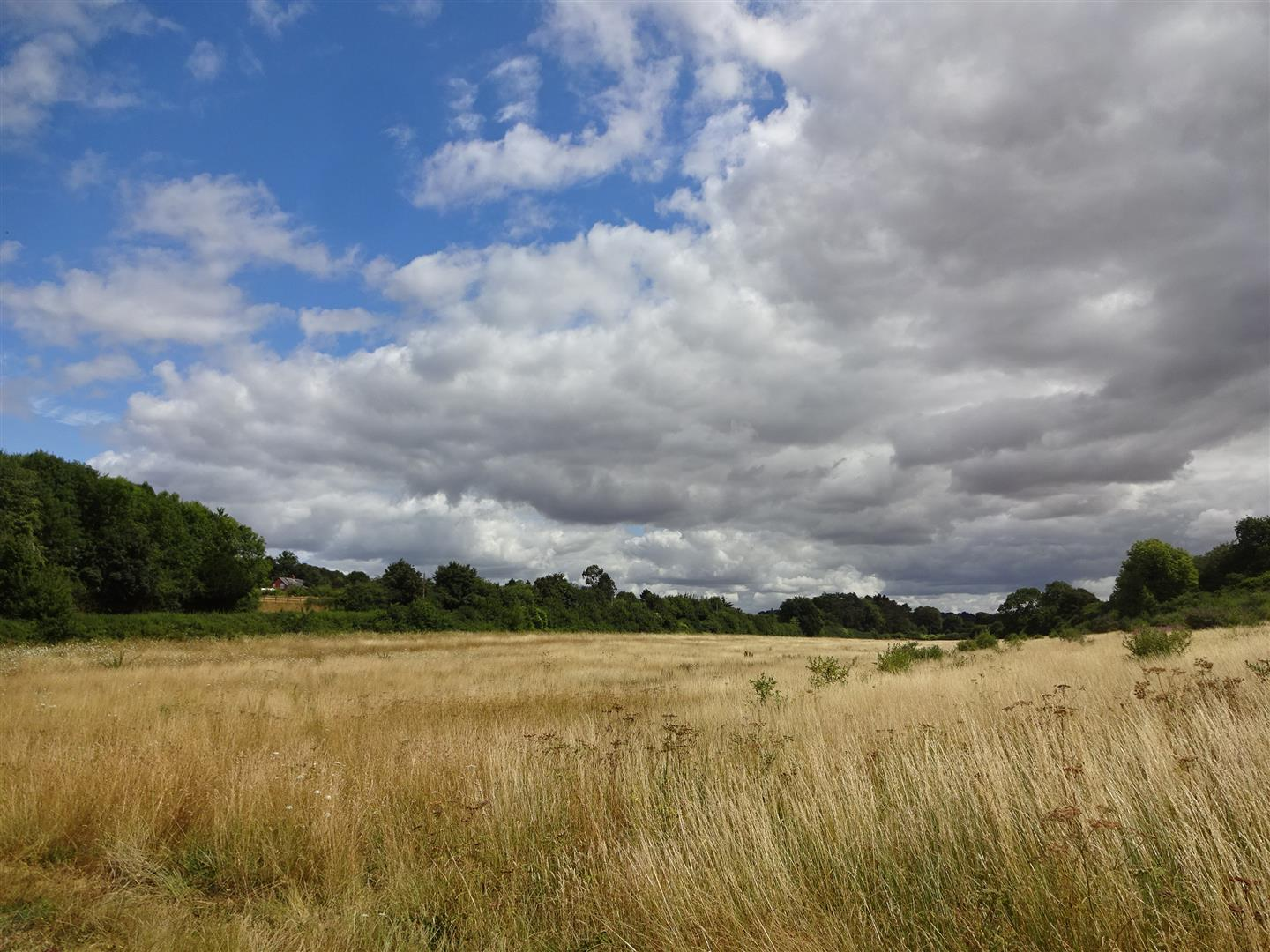 Land at St Mary Bourne, Egbury Road, Andover