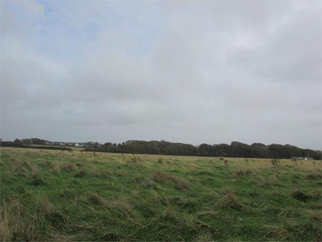 23 acres of land at Cuffern, Roch, Haverfordwest, Pembrokeshire