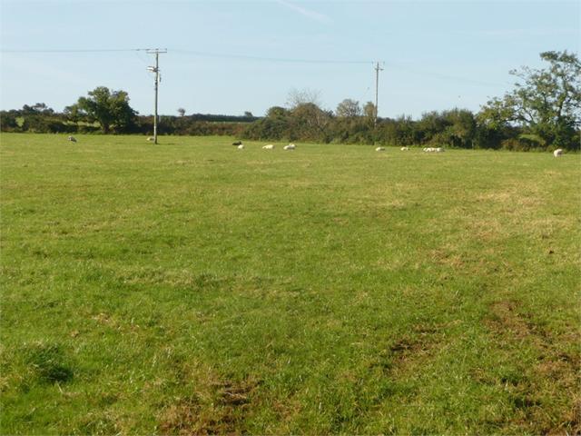 10.18 Acres Formerly Part of Brynawelon Farm, Dinas Cross, Newport, Pembrokeshire