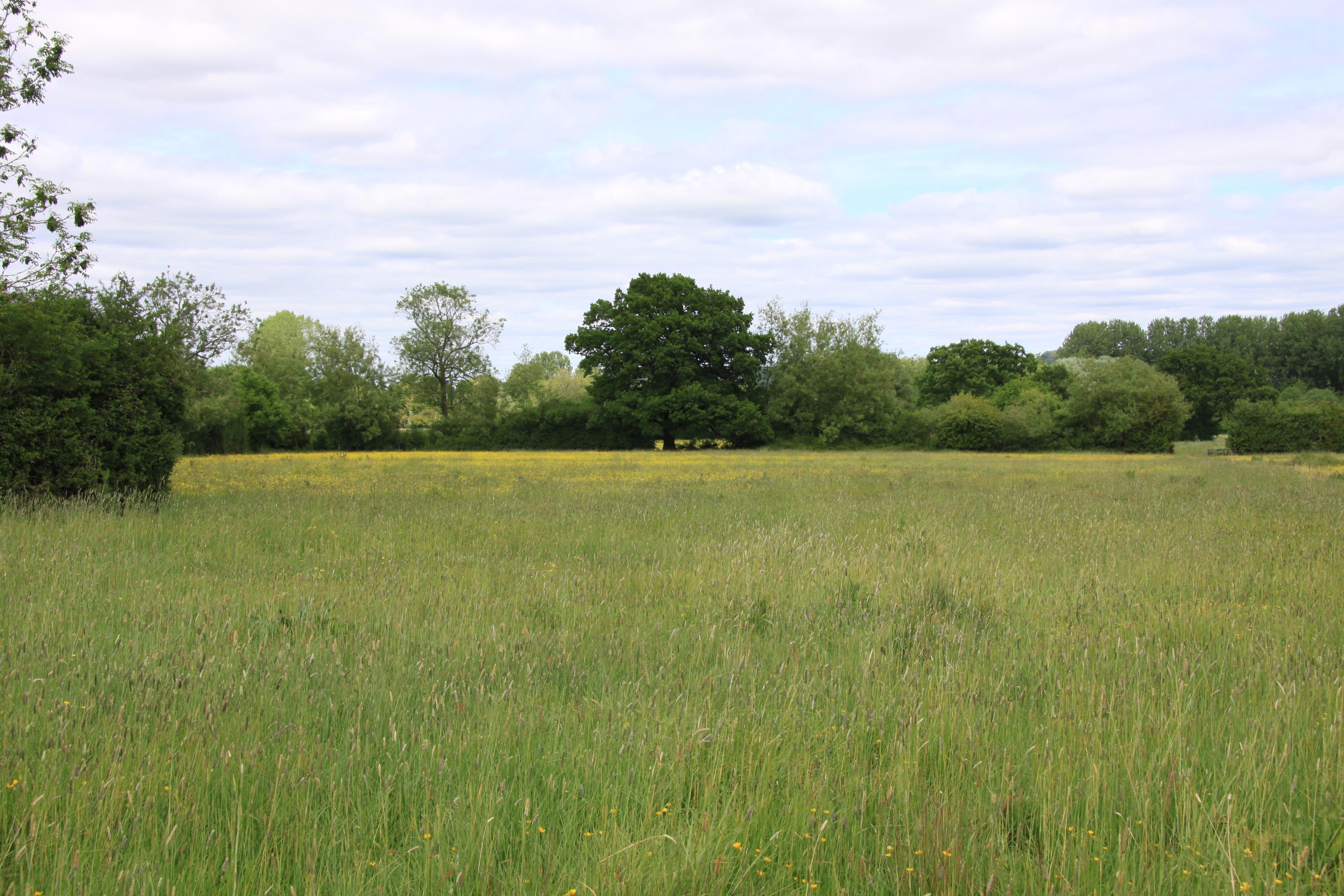Pastureland at Marshmouth Lane, Bourton-On-The-Water , Cheltenham , Gloucestershire