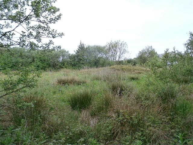 6.742 acres or thereabouts at Mountain View, Llanteg, Narberth, Pembrokeshire
