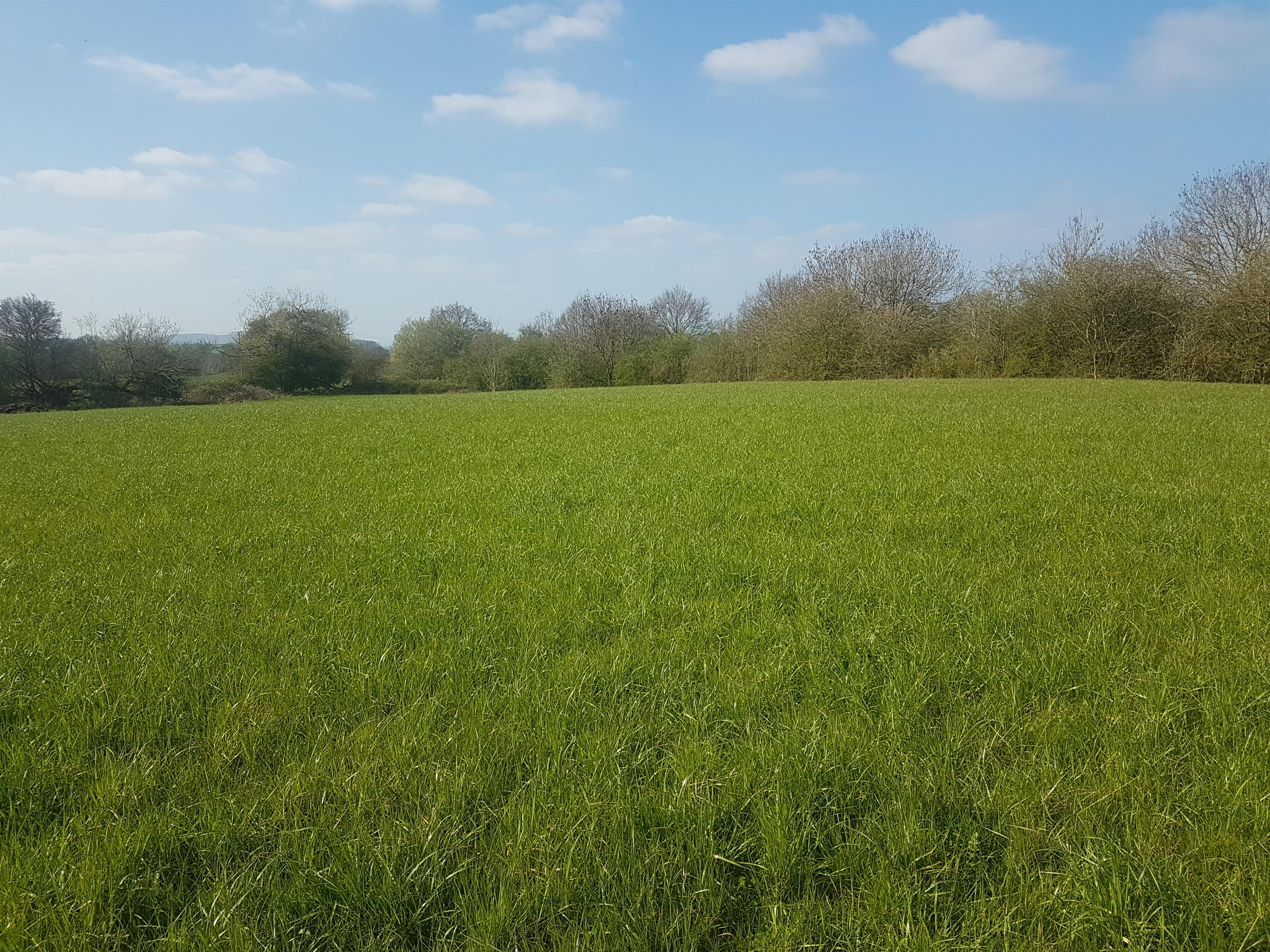 Land at Radway, Adjacent To The A4013, Withington, Hereford, HR1 3ND