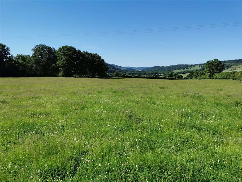 Llangrove, Ross-on-Wye, Herefordshire