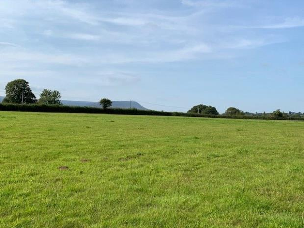 Land At Trelandon, Longtown, Herefordshire