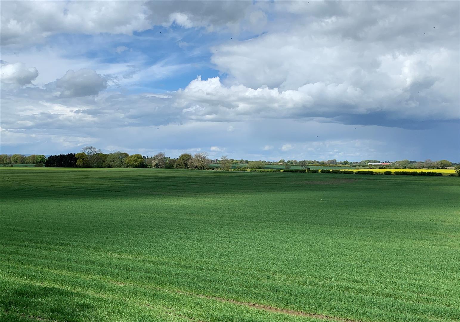 Green Lane, Kirby Wiske, Thirsk