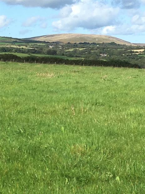Paddock Of Land, Llanycefn, Clunderwen