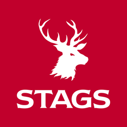 Stags (Barnstaple)
